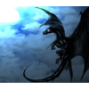 BlackDarkDragon